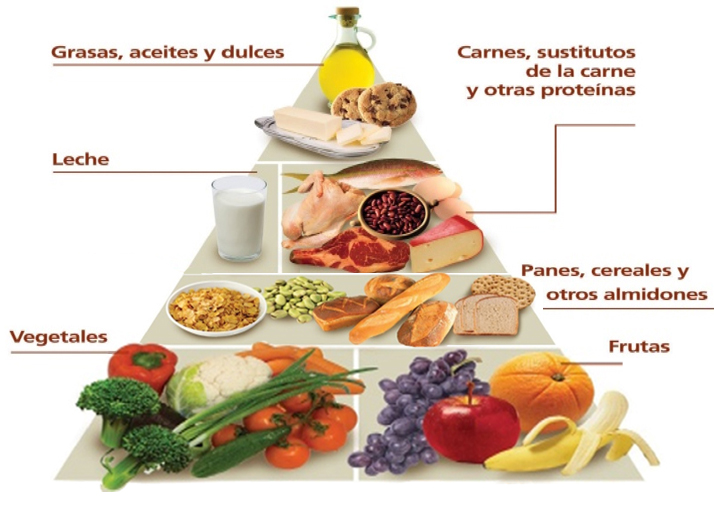 La Pirámide Nutricional o alimentaria y su composición