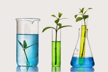 Qu mica sostenible for Procesos quimicos en la cocina