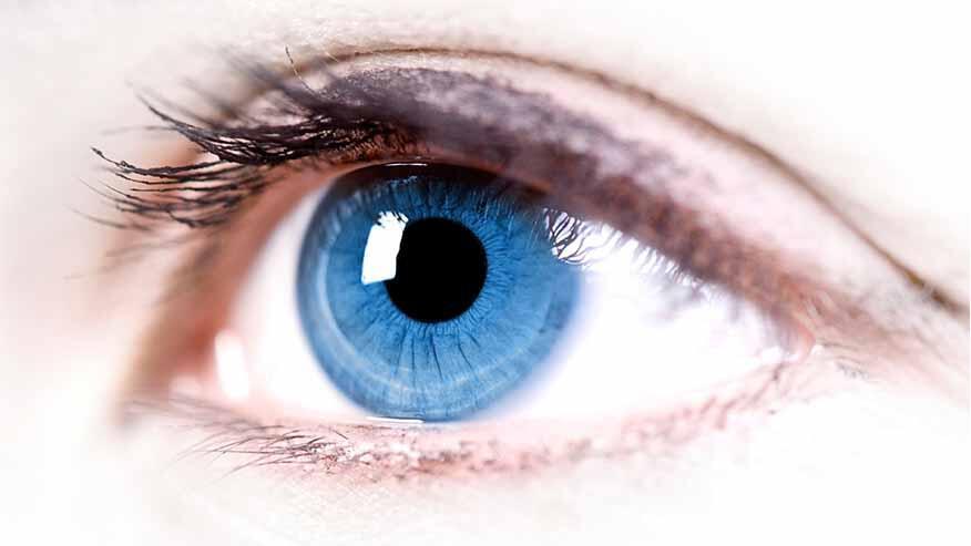 1aec59306 أمراض العين في فصل الصيف... الوقاية والعلاج - GreenArea.me