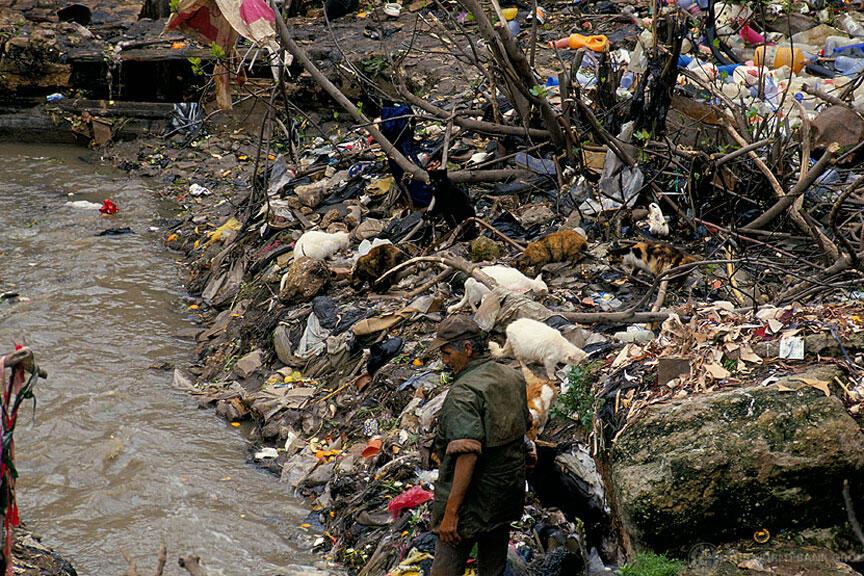 L'insalubrité de l'environnement provoque 12,6 millions de décès par an, selon l'OMS