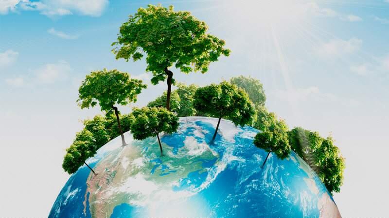 El planeta es más verde que hace 33 años por el aumento de CO2