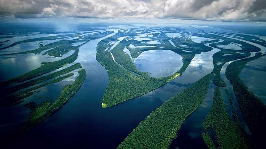 La polución en la Amazonia inhibe la fotosíntesis y perjudica la formación de lluvias