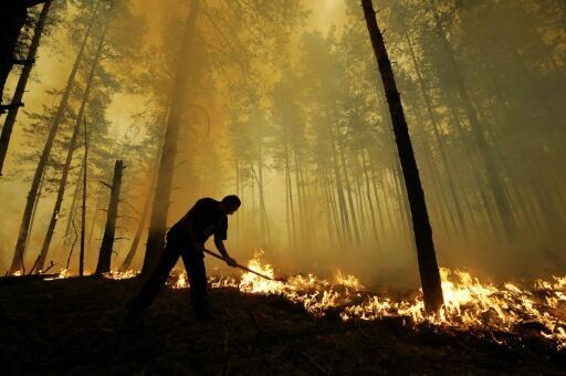 La Russie entre déni et inaction face aux feux de forêts