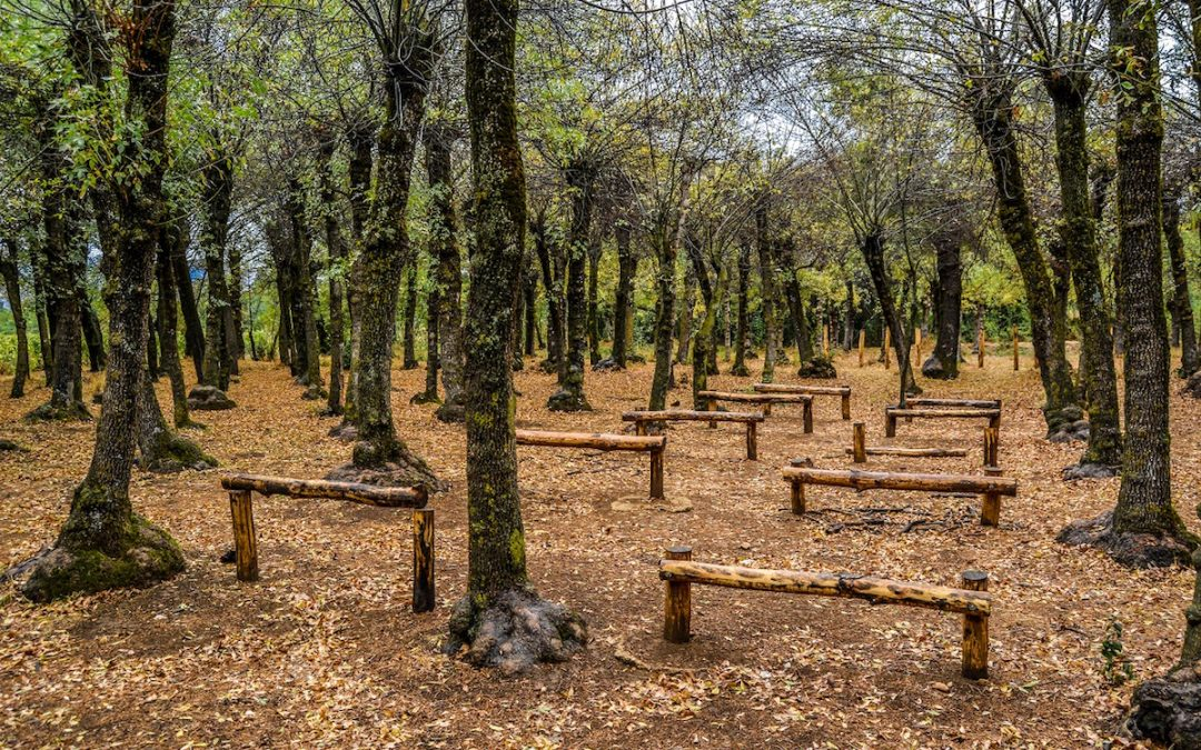 Taanayel… La nature telle qu'elle est