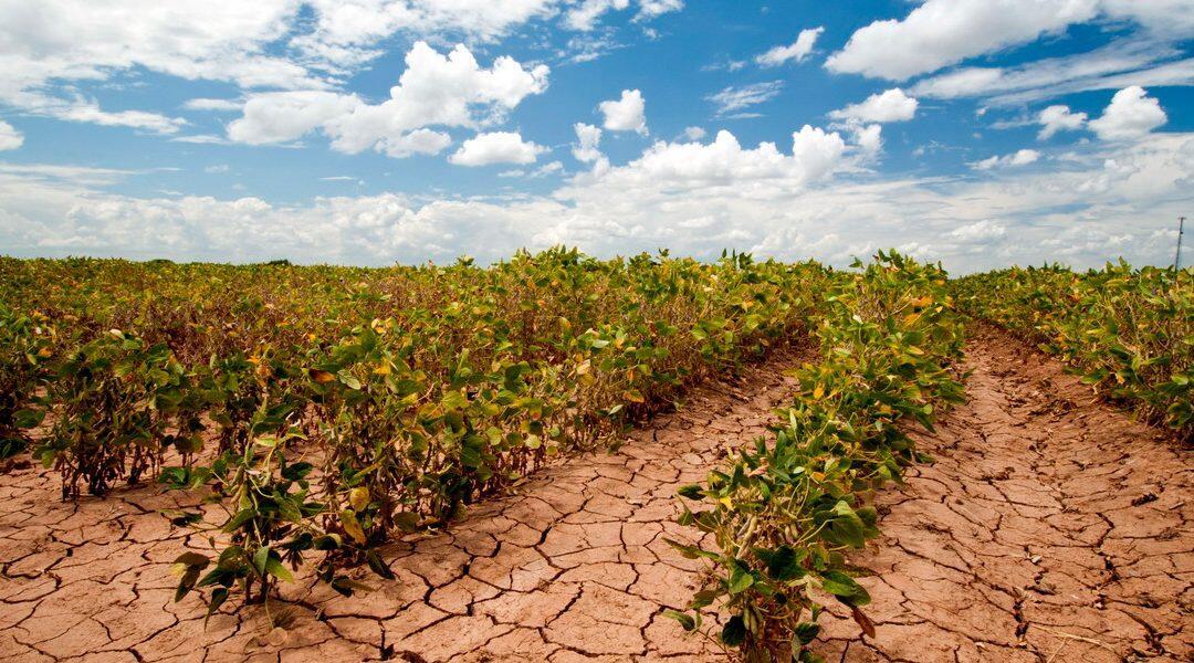 الدول الغنية على العهد بتقديم 100 مليار دولار للتصدي للتغير المناخي