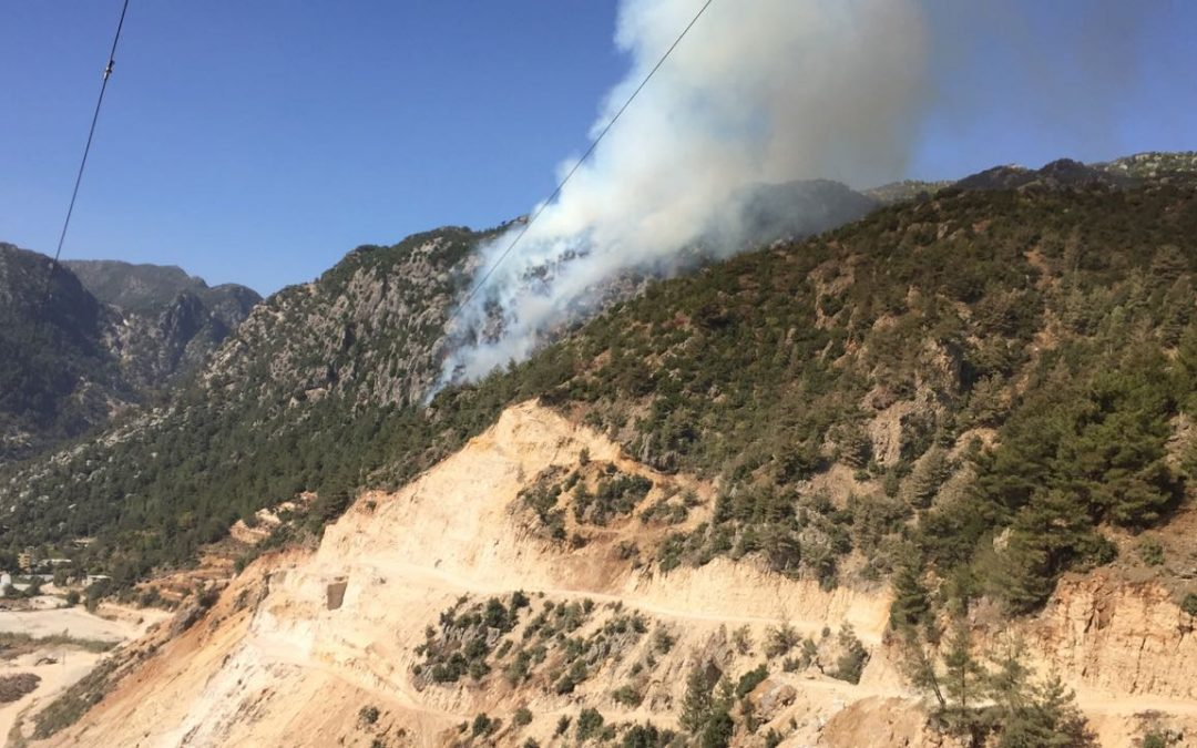حريق في وادي جنة ، في منطقة بطراييش