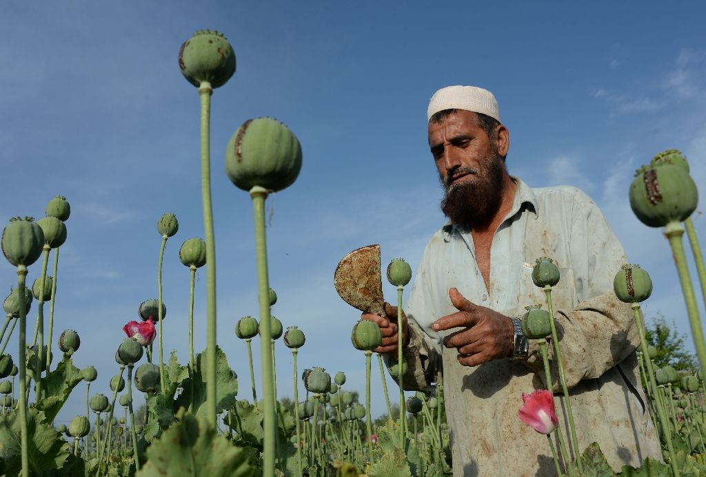 the heroin and opium drug trade in afghanistan and pakistan
