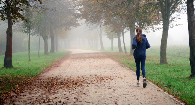 Traffic pollution reduces the benefits of physical exercises