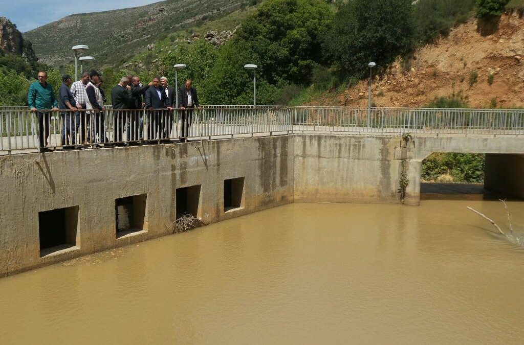 High incidence of cancer due to pollution of the Litani river in the Bekaa
