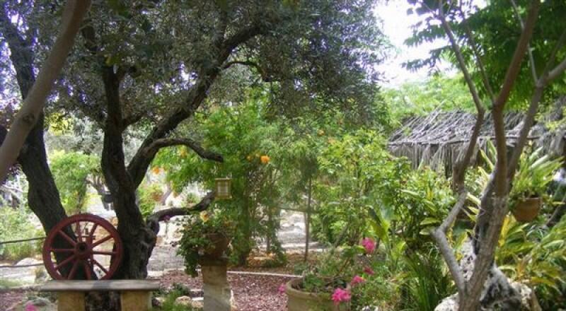 منتزه أخنيفس: موطن الطيور في المغرب
