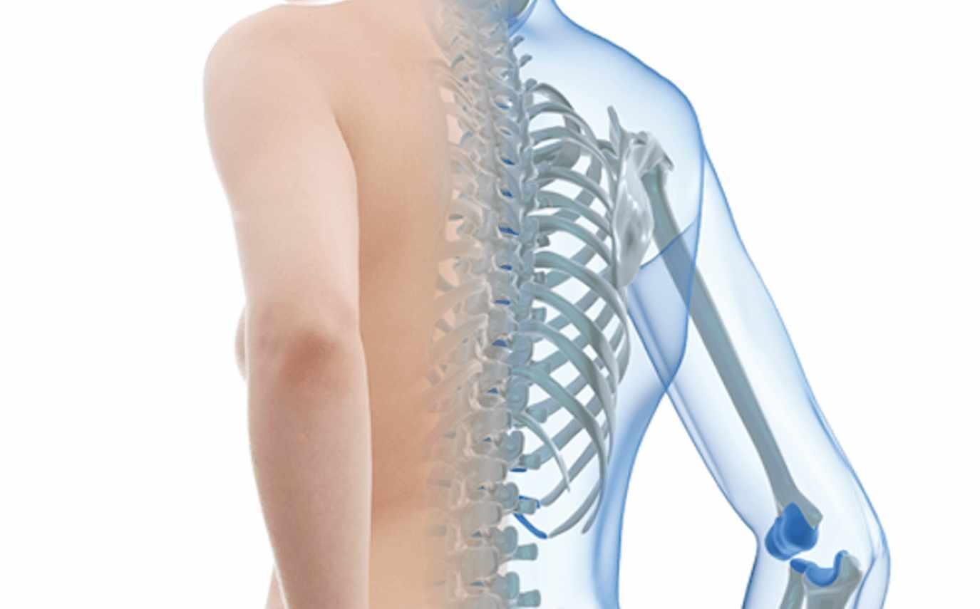Científicos argentinos desarrollaron un gel capaz de regenerar huesos dañados