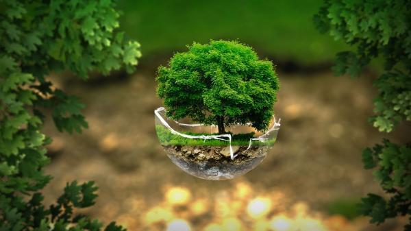 La ecología social y la relación hombre-naturaleza