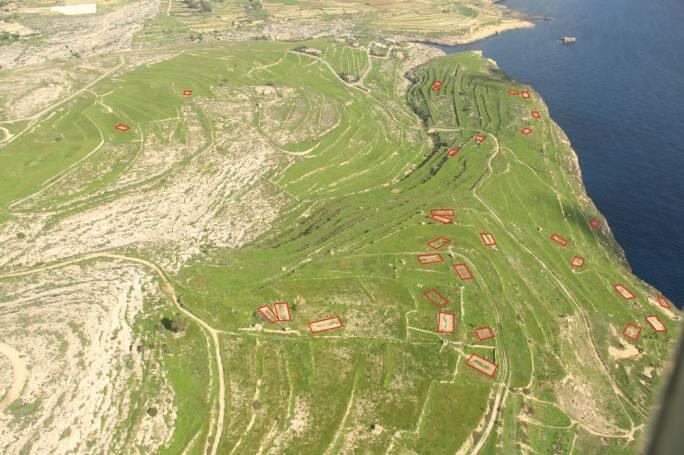 BirdLife a refusé l'accès aux données sur plus de 8 000 sites de piégeage d'oiseaux à Malte