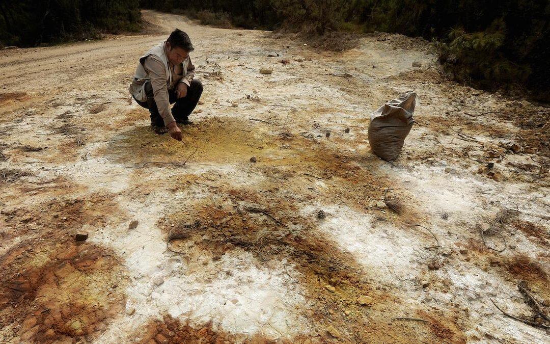 تلوث التربة تهديد كبير للصحة البشرية