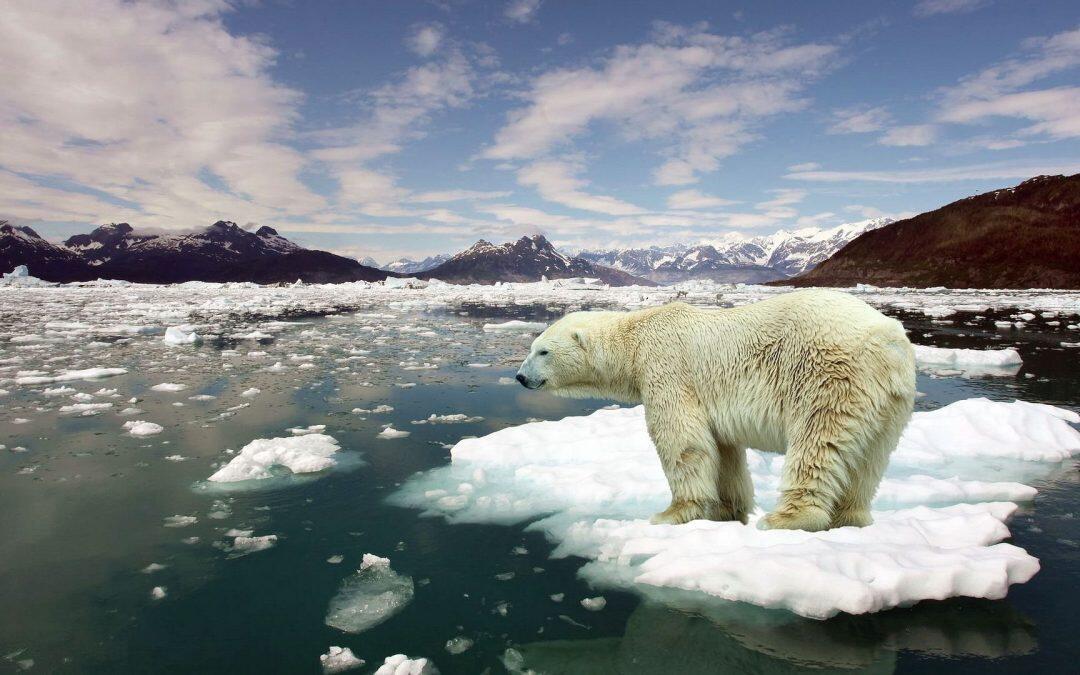 التغيرات المناخية من نصف مليار عام إلى اليوم !!