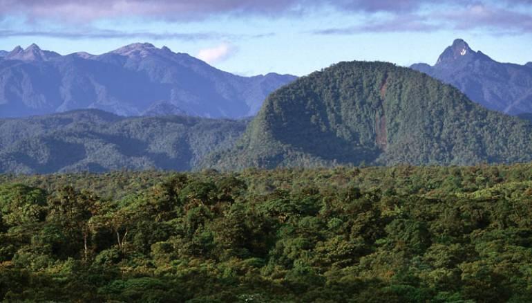ثلث المحميات الطبيعية مهددة بسبب الطرق والمدن