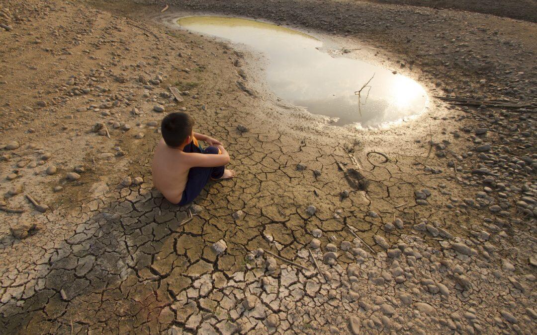 ¿Cual es el aliado más efectivo contra el cambio climático?