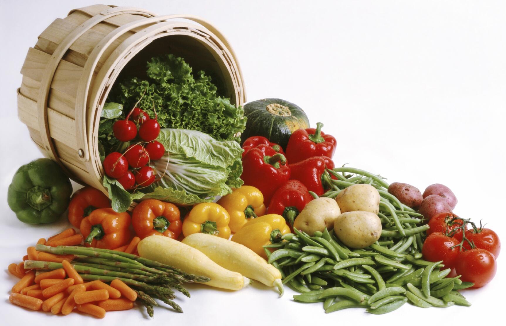 إرتفاع عدد الجياع في العالم … والتجارة الدولية هي الحل لتوفير الغذاء
