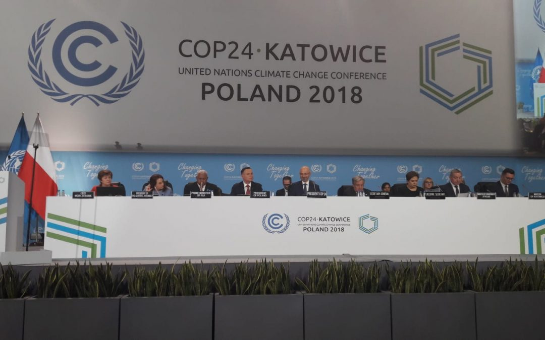 """""""الغابات من أجل المناخ"""" .. إعلان وزاري في cop24"""