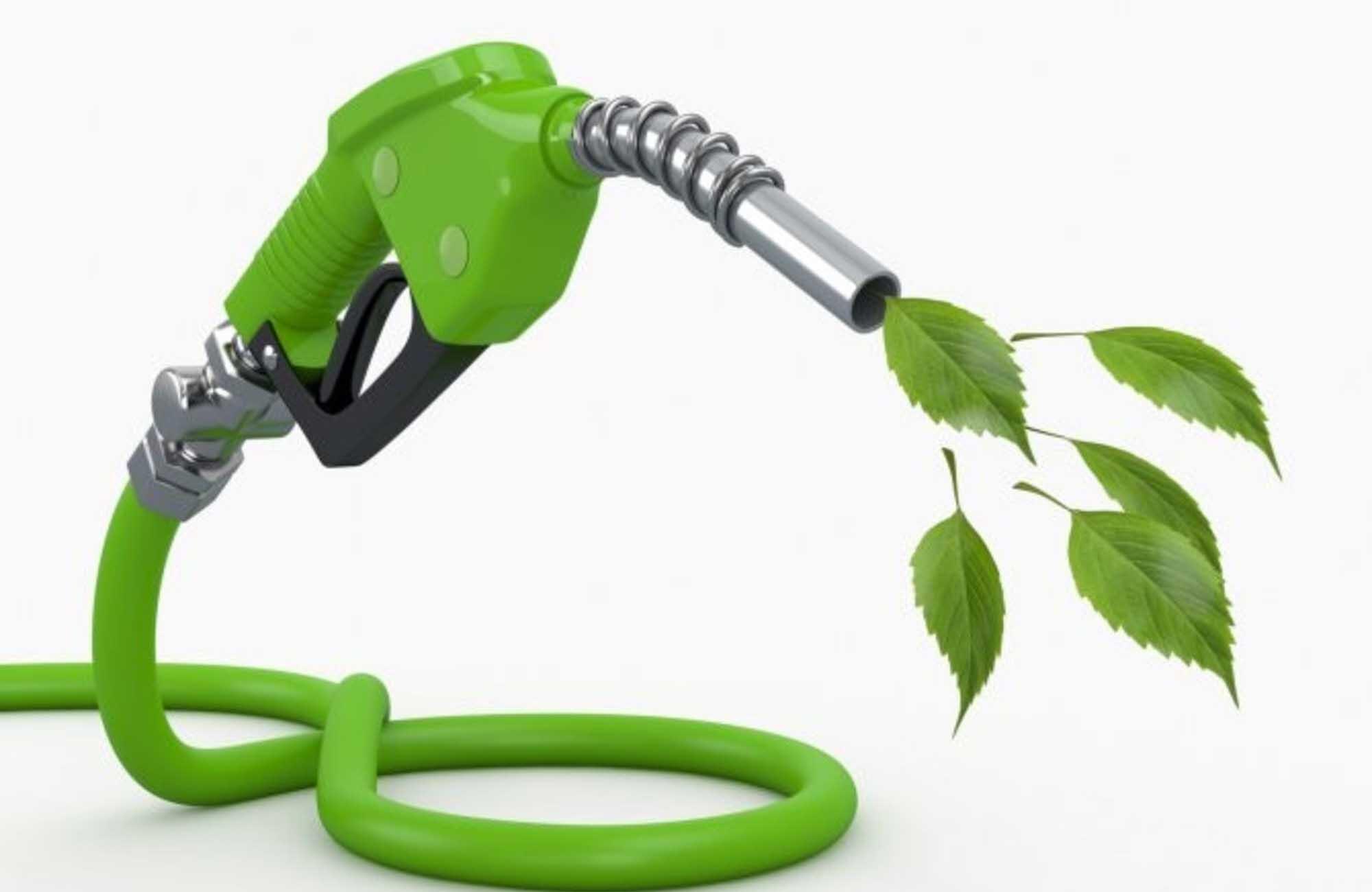 Haciendo cuentas, acerca de los biocombustibles.
