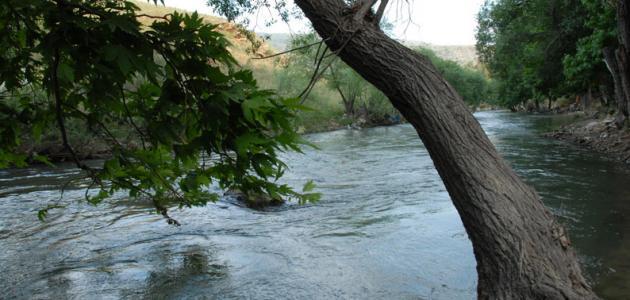 مصلحة الليطاني: بدء مفيض بحيرة القرعون وإجراءات لحماية نوعية المياه
