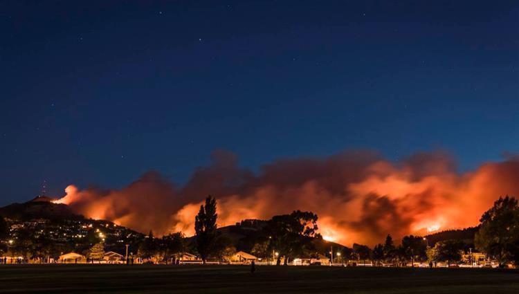 عدم ظهور أي دلائل على تراجع حرائق الغابات في نيوزيلندا