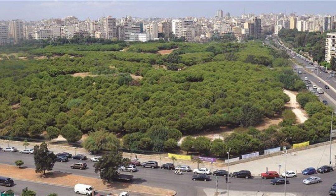 فرعية اللجان تابعت درس اقتراح حماية حرش بيروت