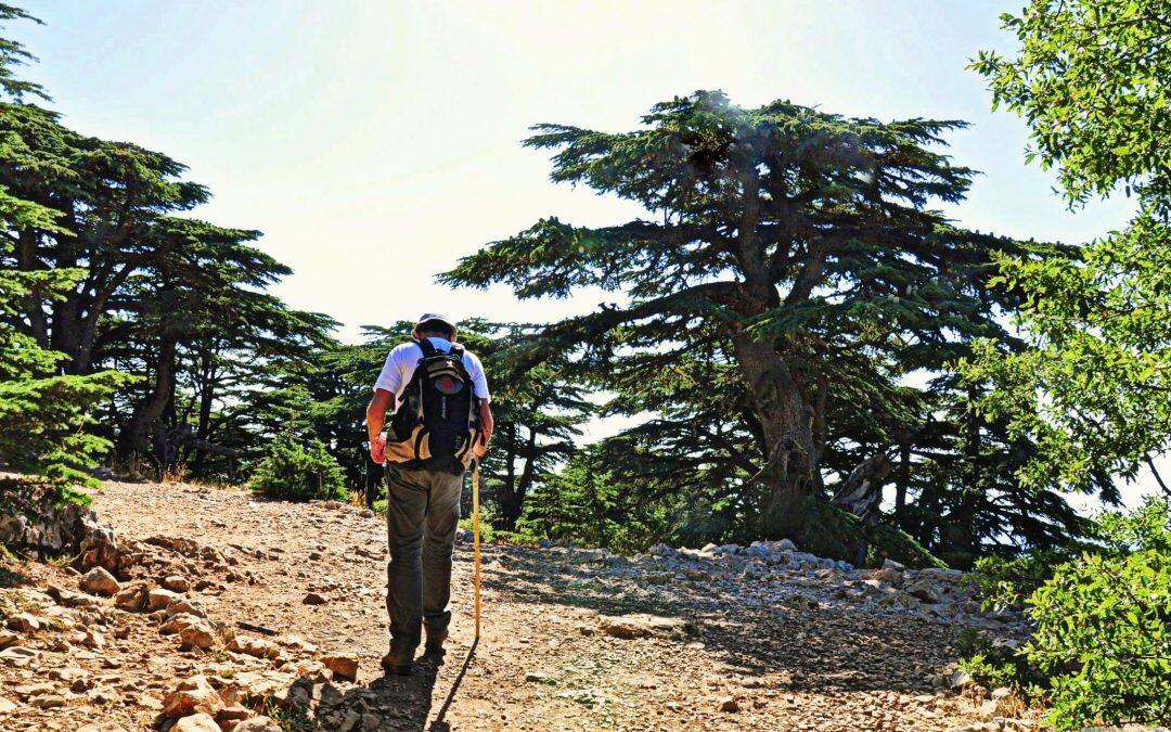 محميات لبنان الطبيعية.. غنى وتنوّع