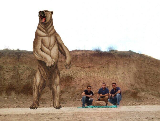 Descubren un oso gigante de 700.000 años de antigüedad
