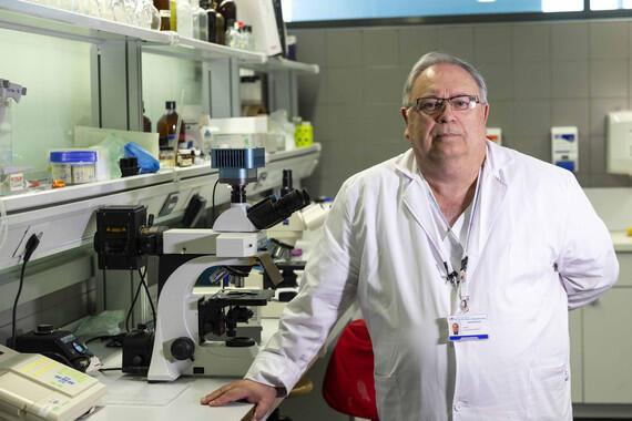 Un hospital público madrileño tratará lesiones medulares con terapia celular