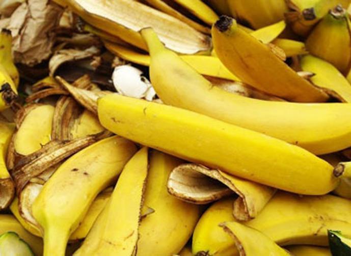 وقود من الموز والمانغو؟