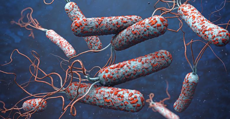 ؟ دلائل عن وباء الكوليرا