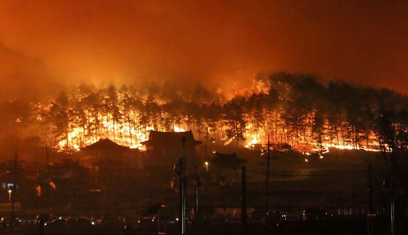 بدء جهود لاحتواء حرائق الغابات في كوريا الجنوبية وإجلاء الآلاف