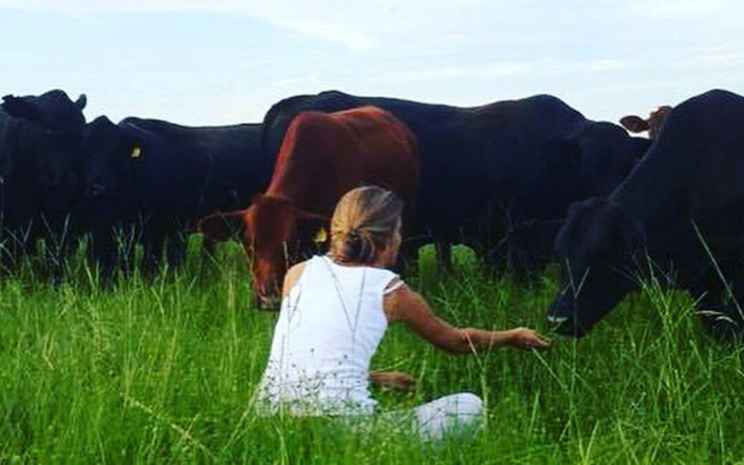 ¿ Como afecta la diversidad de ganado a los ecosistemas?