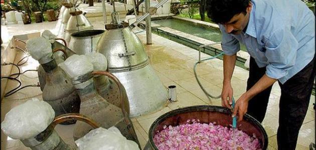 تقطير الزهر في المغرب..عادات لا بد منها في فصل الربيع