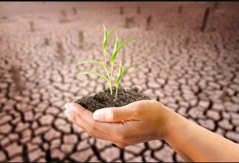 دول الاتحاد الأوروبي تستهلك موارد كوكب الأرض أسرع من وتيرة تجددها