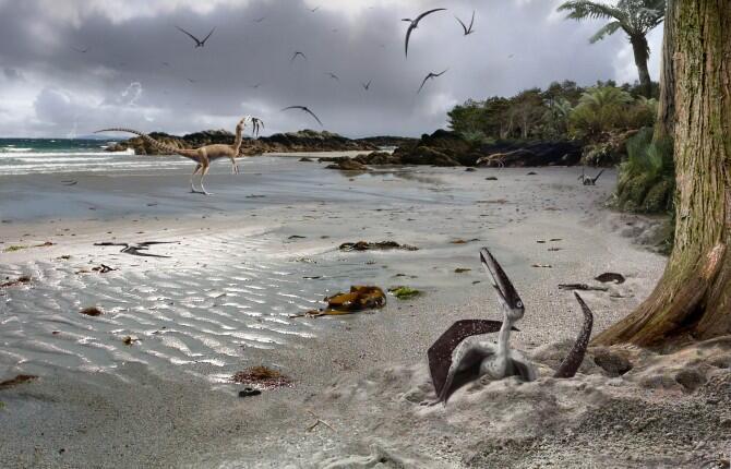 Descubren que los pterodáctilos eran capaces de volar nada más nacer