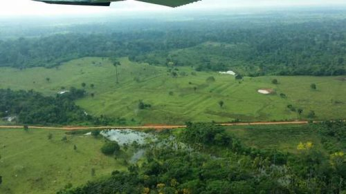 8083_el-cambio-climatico-impacto-en-la-amazonia-antes