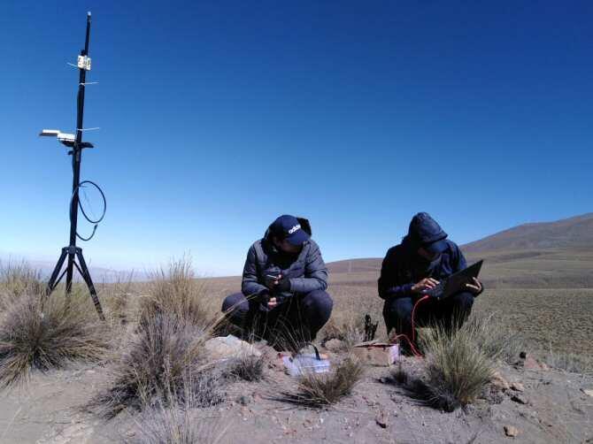 Tecnología para ayudar a la conservación de camélidos
