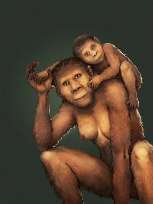 Dientes fósiles revelan cómo amamantaban las 'Australopithecus'