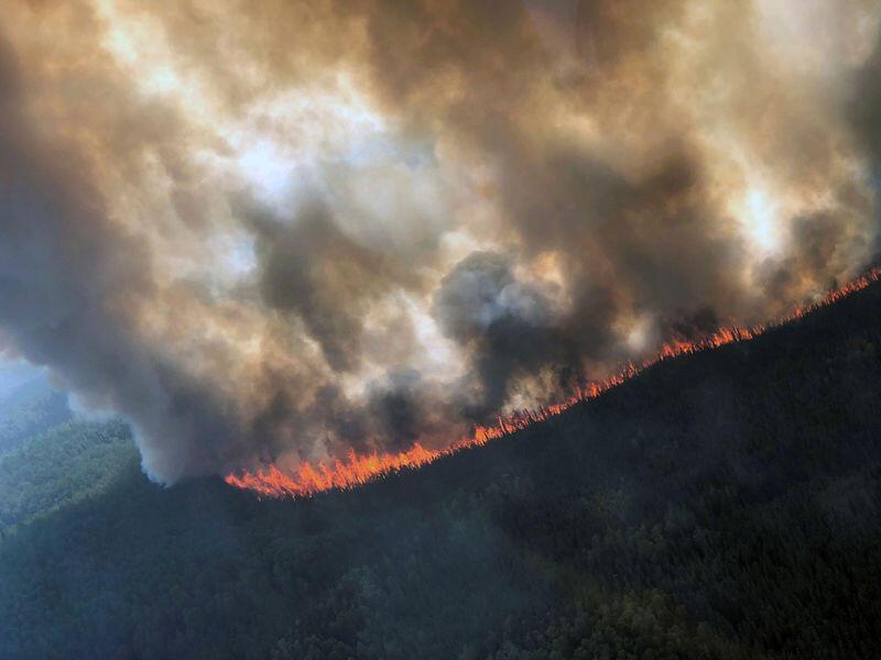 الحرائق تلتهم أحراجا في البترون والاهالي يطالبون بتحقيق عاجل
