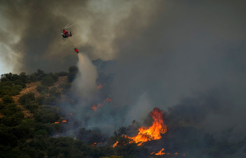 خير طلب من رؤساء البلديات في البلدات المتضررة من الحرائق تقديم لوائح بالاضرار