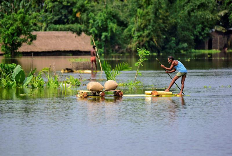 تفاقم الفيضانات في شمال شرق الهند وحيوان وحيد القرن في خطر
