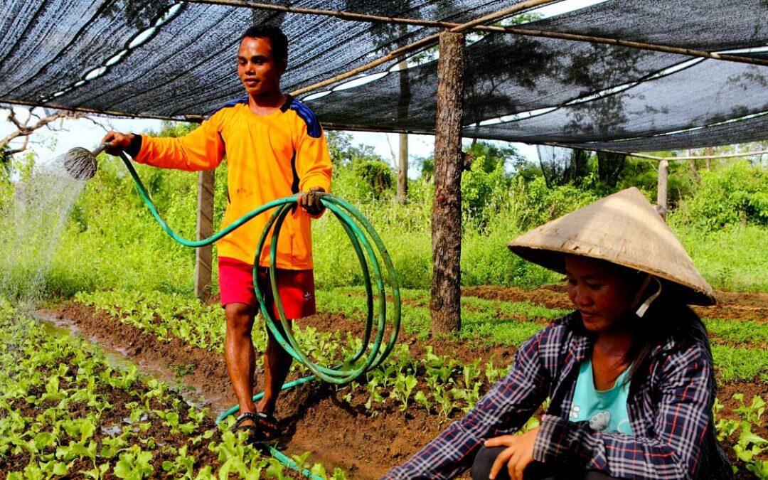 الشعوب الأصلية شريك لا يقدر بثمن في تقديم الحلول لتغير المناخ
