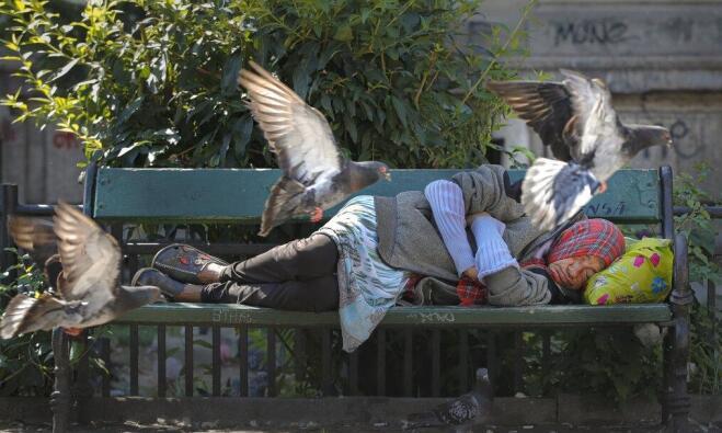 وكالة: عدد الوفيات في هولندا زاد بنحو 400 خلال موجة حارة