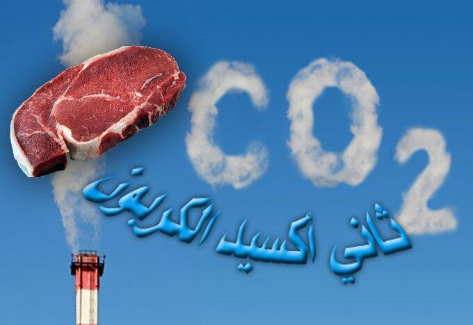 الأمم المتحدة: أكثر من 500 مليون شخص تحت تأثير المناخ والحل يكمن في  تغيير نمط الإستهلاك