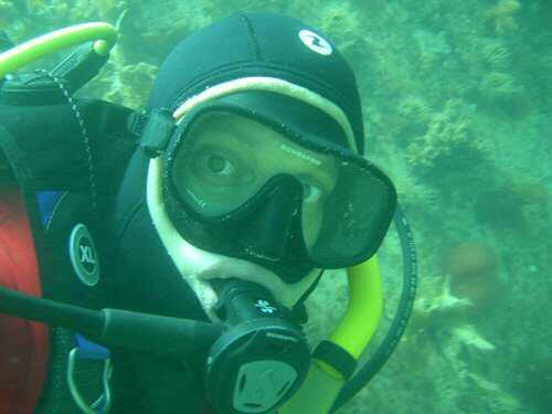 En los últimos 250 años se han descrito más de tres mil especies de invertebrados en el Mar Argentino