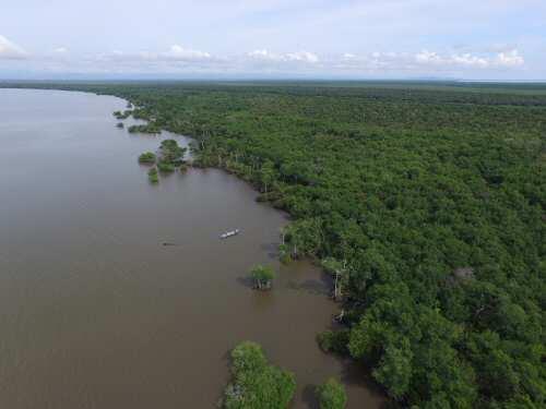 Colombia, despensa de carbono azul
