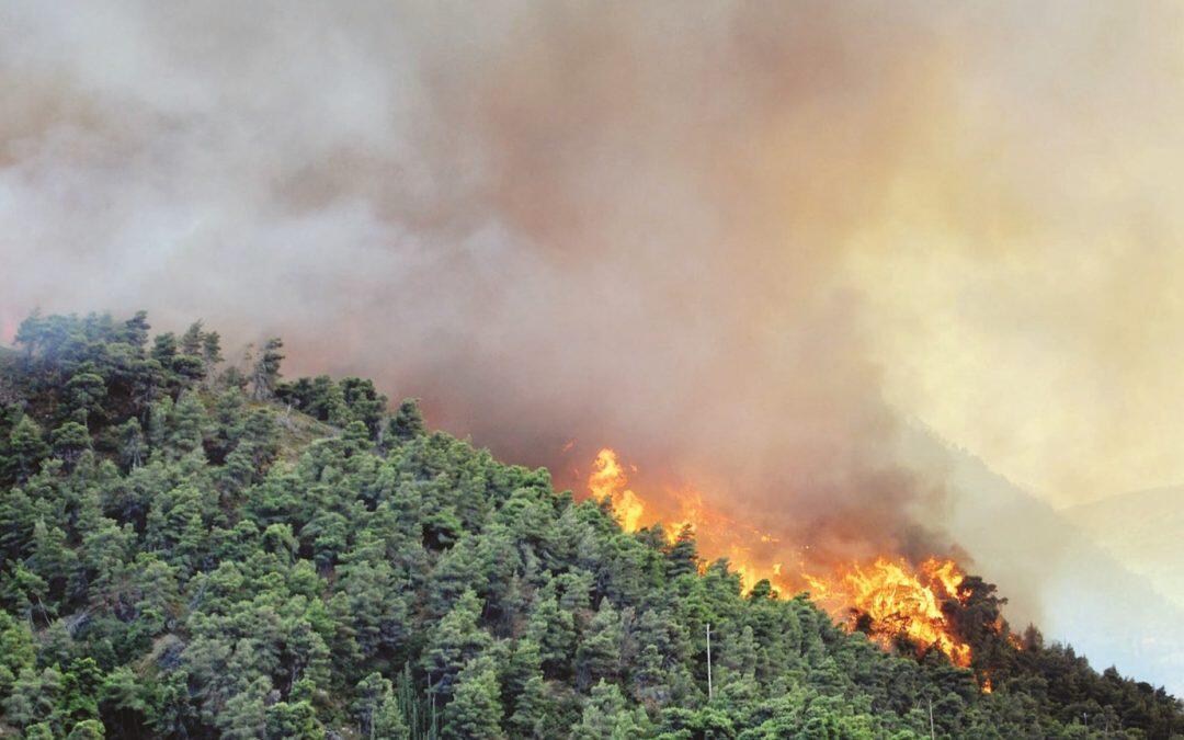 أميريكا خسرت حوالي 24 مليون فدان من أراضي الطبيعة في 16 عاما