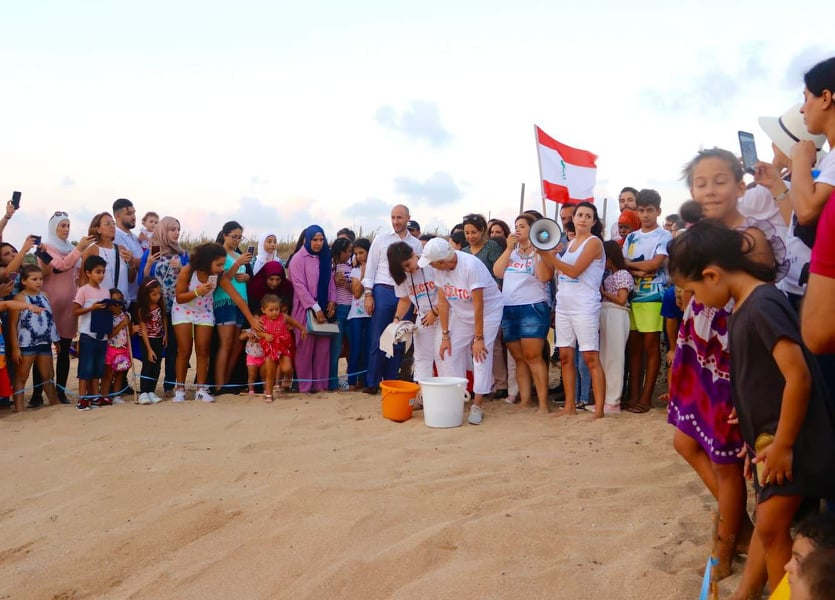 إطلاق 156 منها بمشاركة جريصاتي… شاطئ المنصوري على الخارطة العالمية لحماية السلاحف